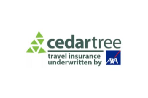 Cedar Tree  logo