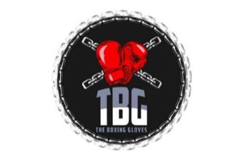The Boxing Gloves logo